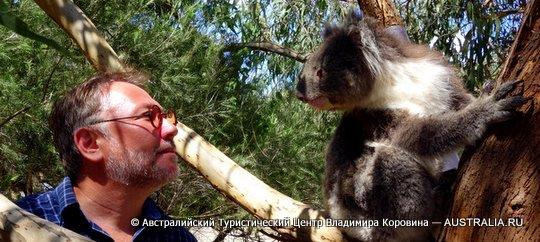 Русские гиды в австралии
